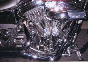 Harley_Indoors
