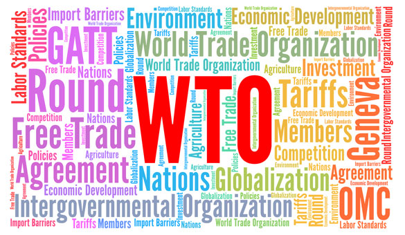 wto accomplishments